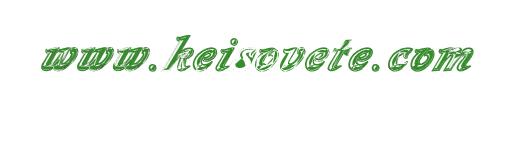 Keisovete.com - Онлайн магазин за кожени калъфчета-ключодържатели за автомобилни ключове.